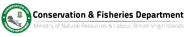 conservation and fisheries dept logo