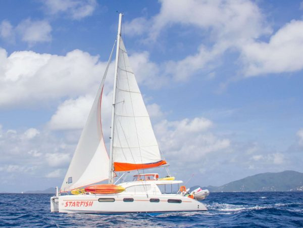 starfish catamaran sailboat
